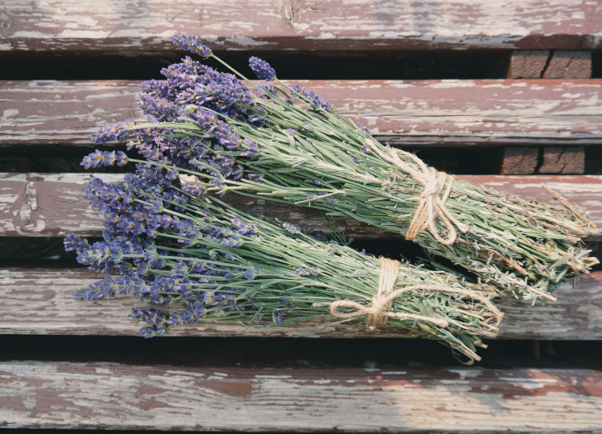 7 great health benefits of lavender