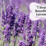 7 Benefits of Lavender