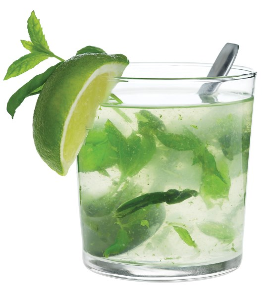 Skinnygirl Mint Julep Recipe