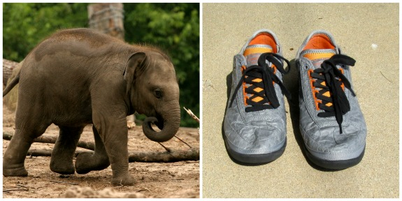 elephant-unstitched-utilities