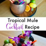 Tropical Mule Cocktail Recipe Alcoholic drink