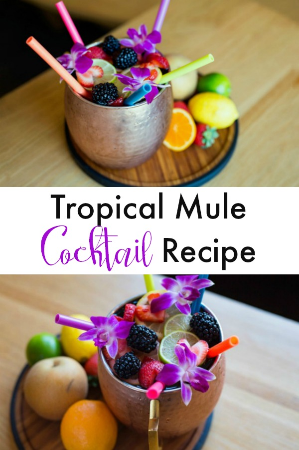 A simple and easy twist on the classic Moscow Mule cocktail. This tropical frink has a tiki vibe but is super simple. Make it a mocktail, too, by omitting the vodka